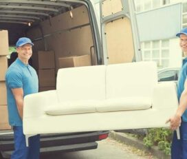 Shah Movers | Professional Movers and Packers in Dubai