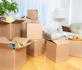 Skynet Packers & Movers